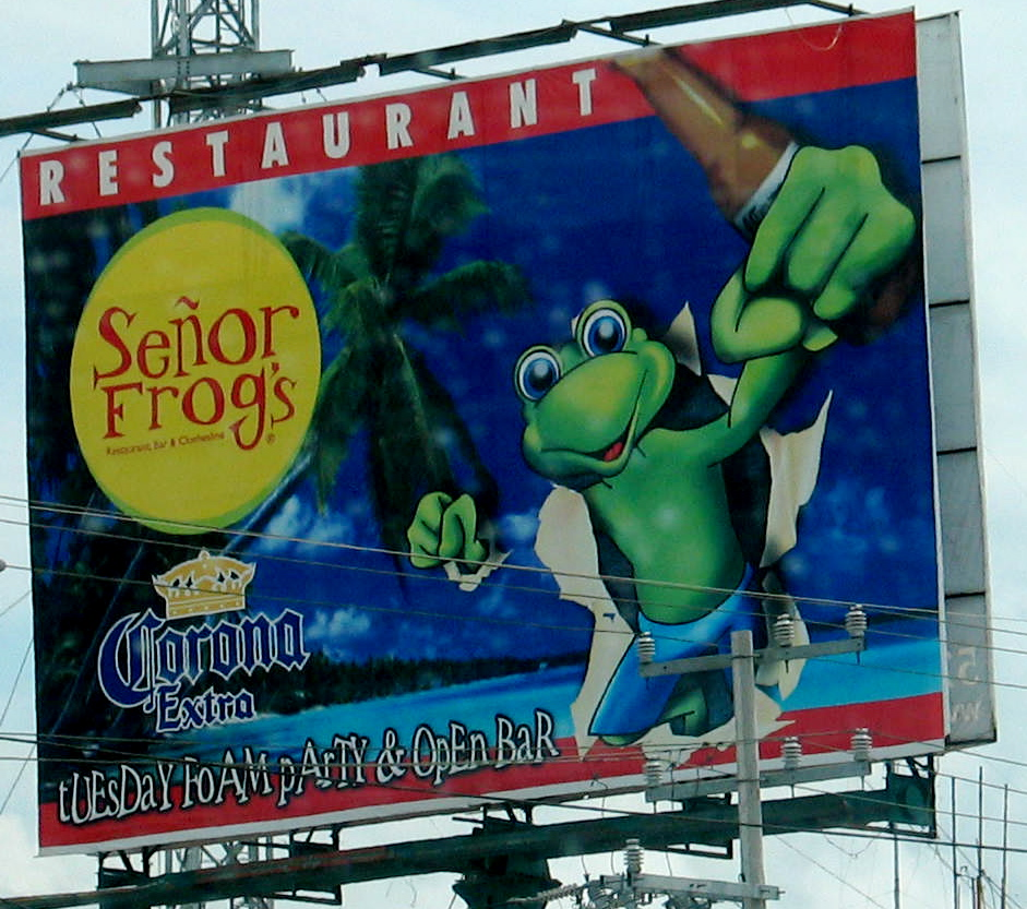 Senior Frogs, Cinco De Mayo Celebration. Photo, SCV Bail Bonds