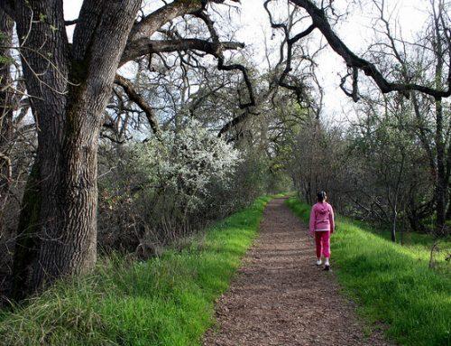 Santa Clarita Bail Bonds: San Bernardino Hikers Fear Stalker